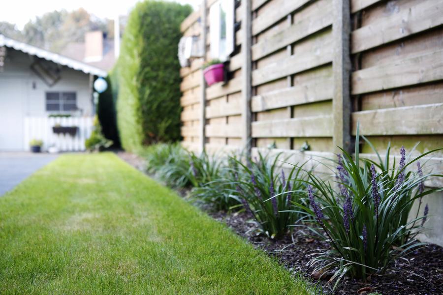 Laat uw tuin door AWB Algemene Werken onder handen nemen
